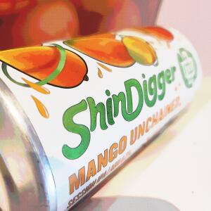 Shindigger.live 5 star review on 13th July 2021