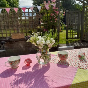 The Cotton Bunting 5 star review on 10th July 2021