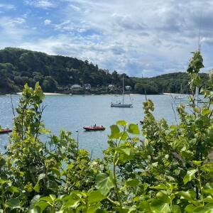 Salcombe Finest 5 star review on 5th July 2021