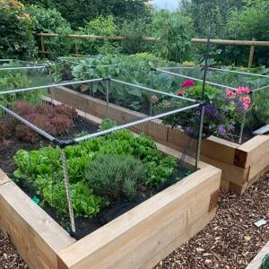 Harrod Horticultural 5 star review on 7th August 2021