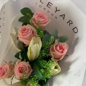 Appleyard London 4 star review on 1st January 2019