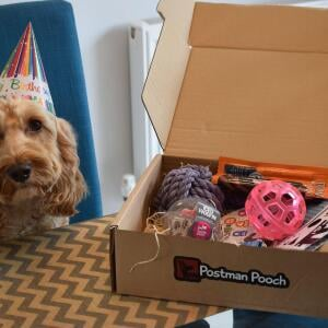 Postman Pooch 5 star review on 15th October 2020