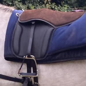 GS Equestrian 5 star review on 27th July 2021