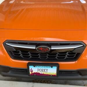 License Plates on the Cheap 5 star review on 22nd June 2021