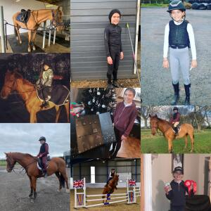 Aztec Diamond Equestrian 5 star review on 1st April 2021
