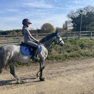 Aztec Diamond Equestrian 5 star review on 21st May 2021
