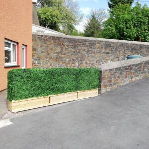 Evergreen Trees & Shrubs 4 star review on 14th May 2020
