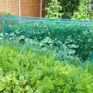 Gardening Naturally 5 star review on 7th July 2021