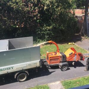 Bardsey Tree Services 5 star review on 17th June 2020