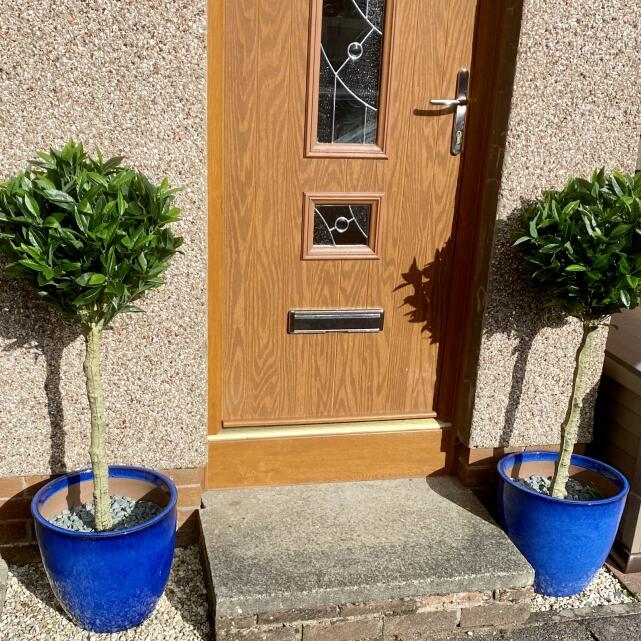 Evergreen Trees & Shrubs 5 star review on 18th July 2020