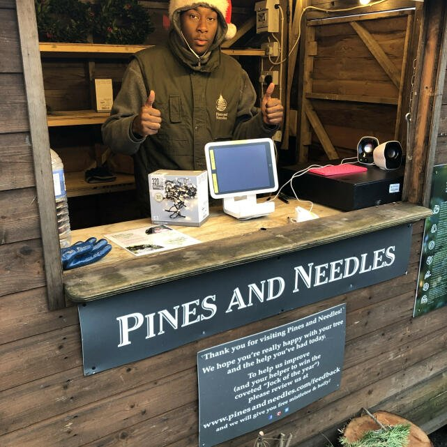 Pines and Needles 5 star review on 21st December 2019