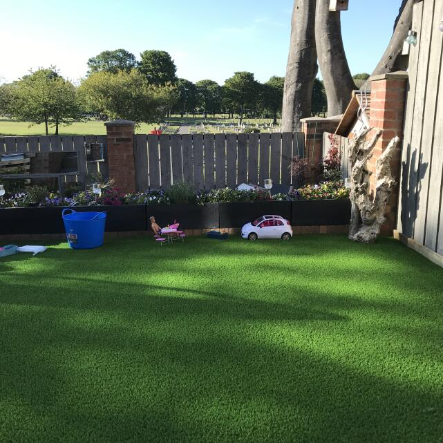 LazyLawn 5 star review on 1st June 2020