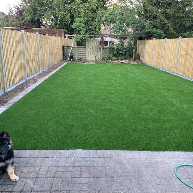 LazyLawn 5 star review on 30th July 2020