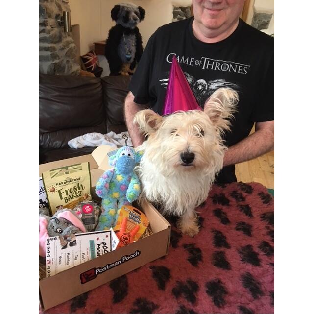 Postman Pooch 5 star review on 13th November 2020