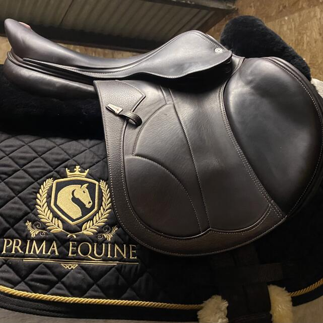 Prima Equine 5 star review on 20th January 2021