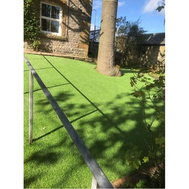 LazyLawn 5 star review on 16th October 2020