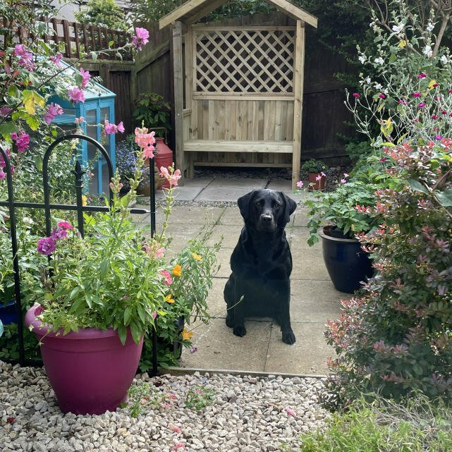 Jacks Garden Store 5 star review on 24th August 2021