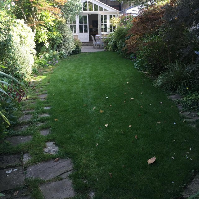 London Lawn Turf Company 5 star review on 10th September 2021