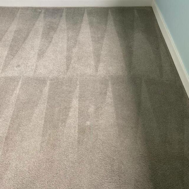Carpet Bright UK 5 star review on 12th May 2021
