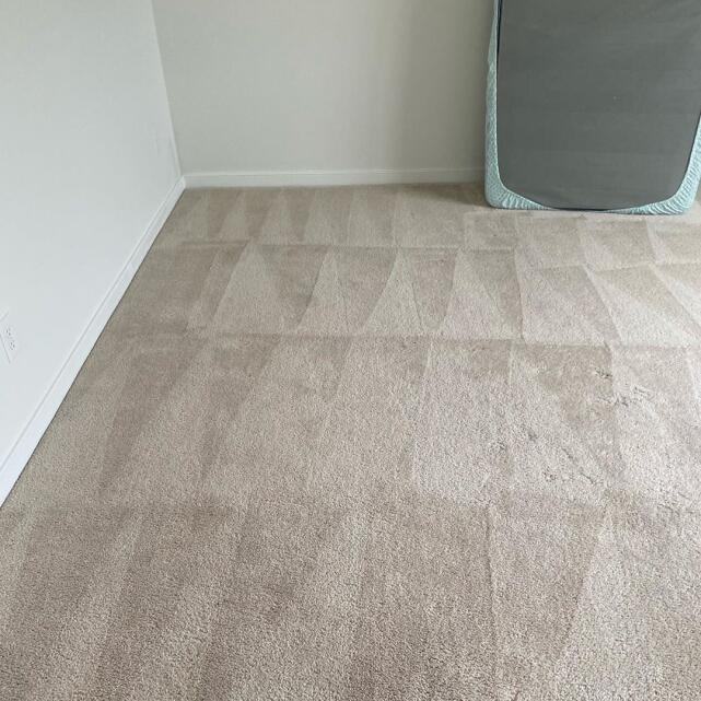 Carpet Bright UK 5 star review on 3rd August 2020