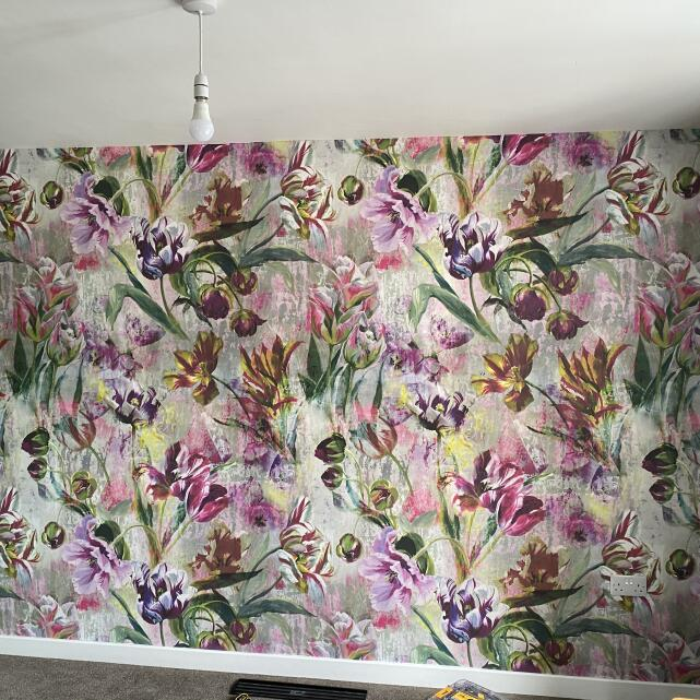 Designer Wallpapers 5 star review on 9th September 2020