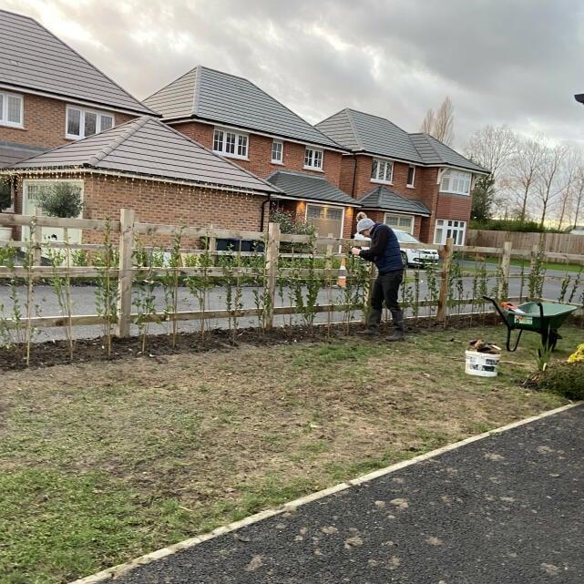 Grasslands Nursery 5 star review on 16th December 2020