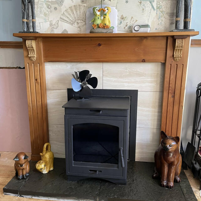 Direct Stoves 5 star review on 14th July 2021