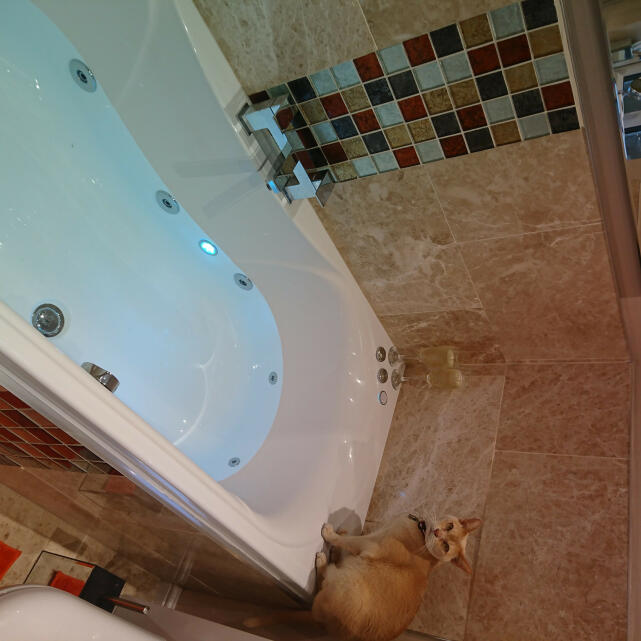 The Whirlpool Bath Shop 5 star review on 29th April 2019