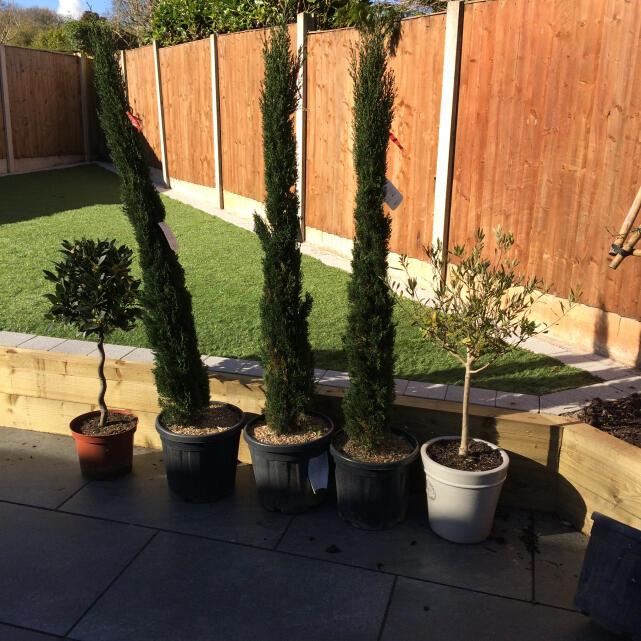 Grasslands Nursery 1 star review on 23rd April 2021