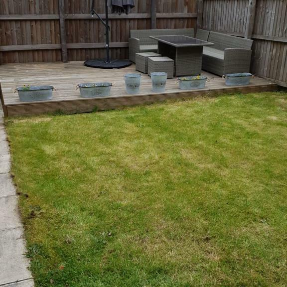 Great Grass 5 star review on 22nd February 2020