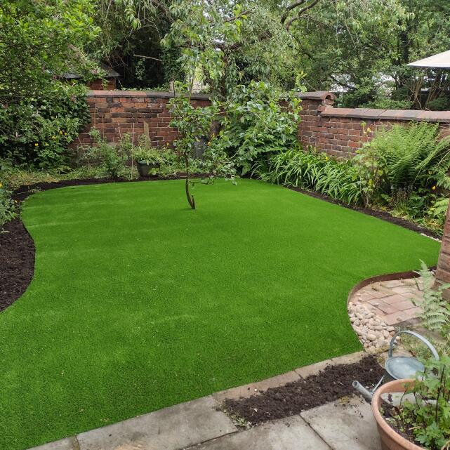 LazyLawn 5 star review on 8th June 2021