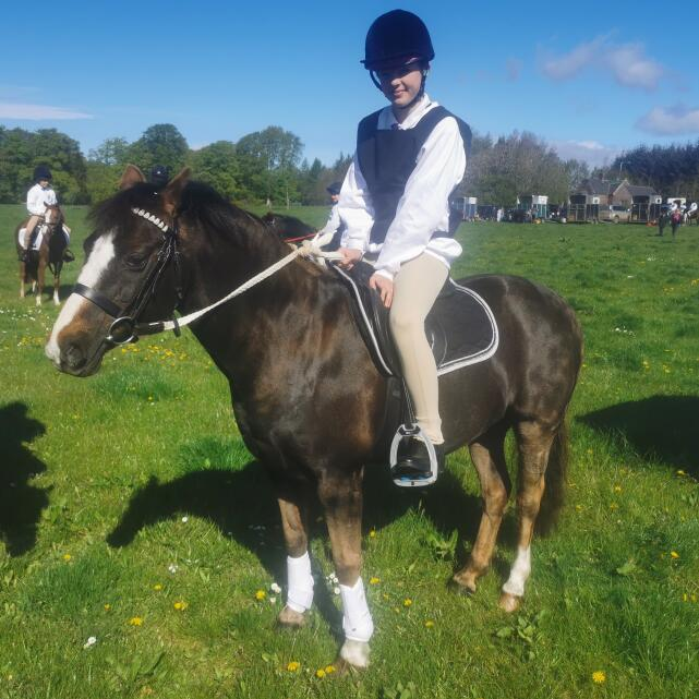 Aztec Diamond Equestrian 5 star review on 29th May 2021