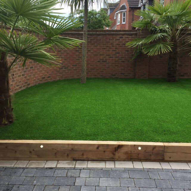 LazyLawn 5 star review on 2nd July 2020