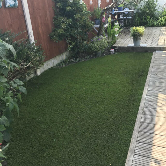 Great Grass 5 star review on 15th July 2021