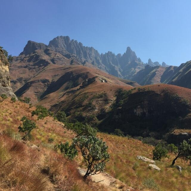 Walks in Africa 5 star review on 6th September 2018