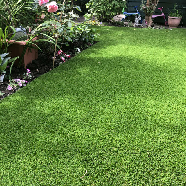 LazyLawn 5 star review on 30th June 2021