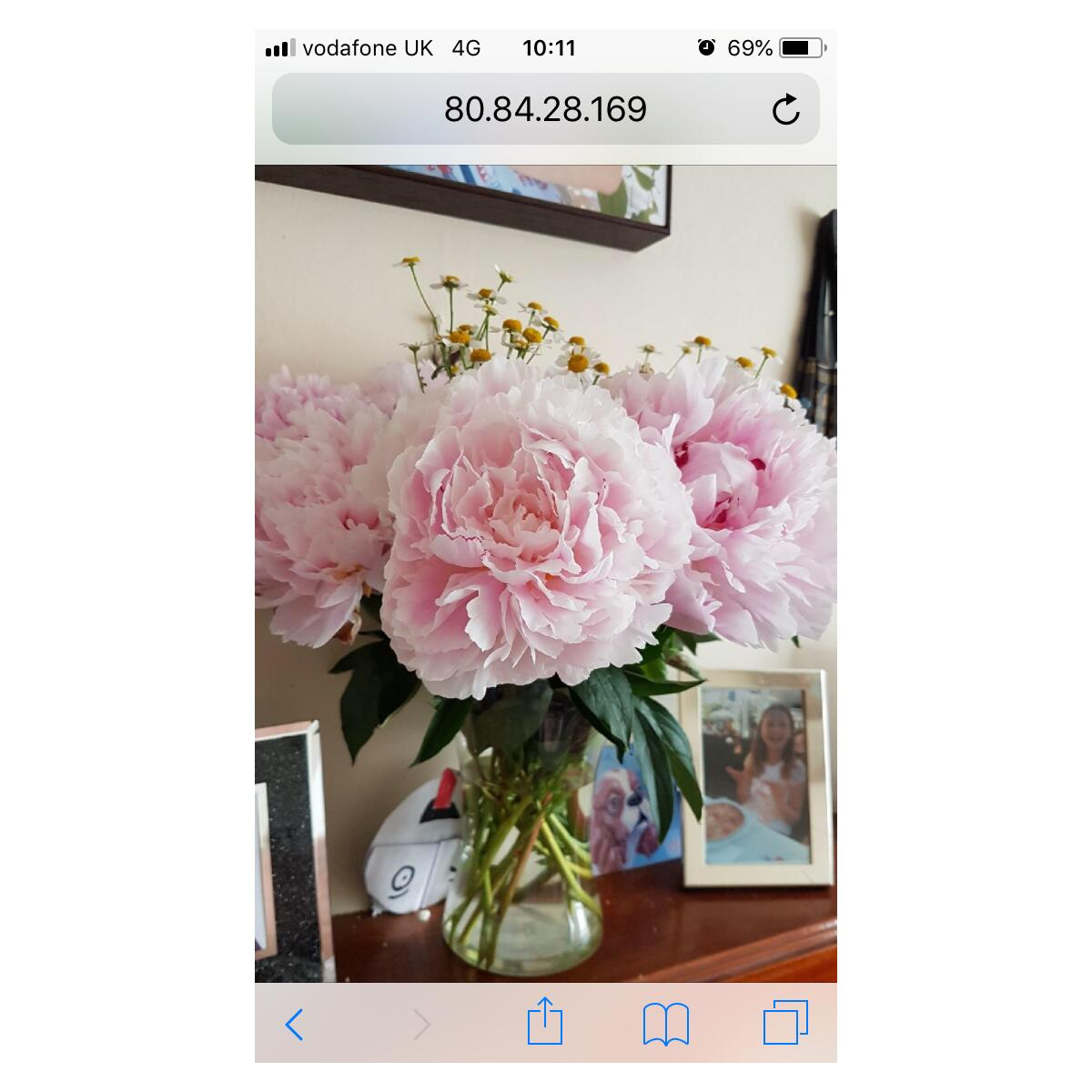 Eflorist Reviews Read 1011 Genuine Customer Reviews