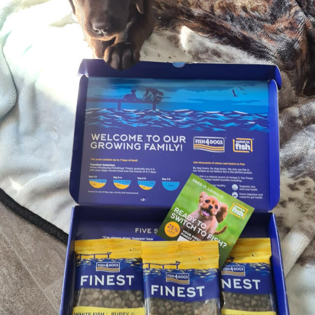Fish4dogs Ltd 5 star review on 16th April 2021