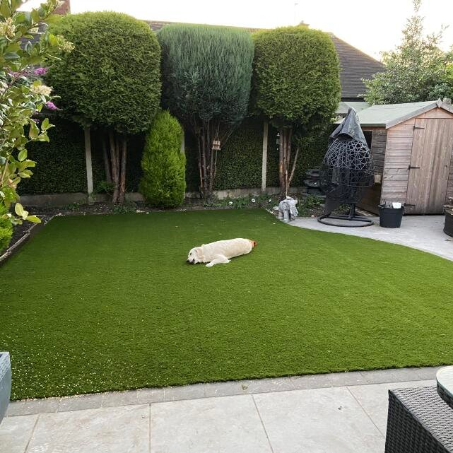 Great Grass 5 star review on 31st July 2021
