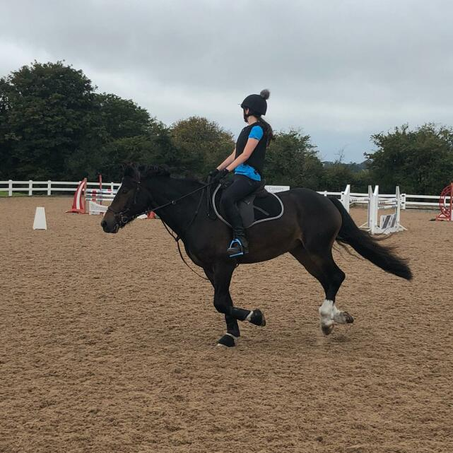 Aztec Diamond Equestrian 5 star review on 1st November 2020