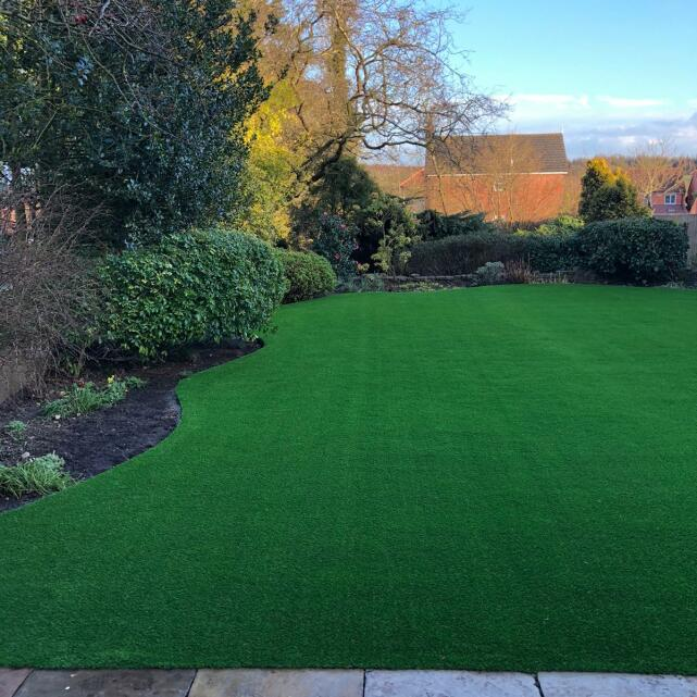 LazyLawn 5 star review on 26th February 2021