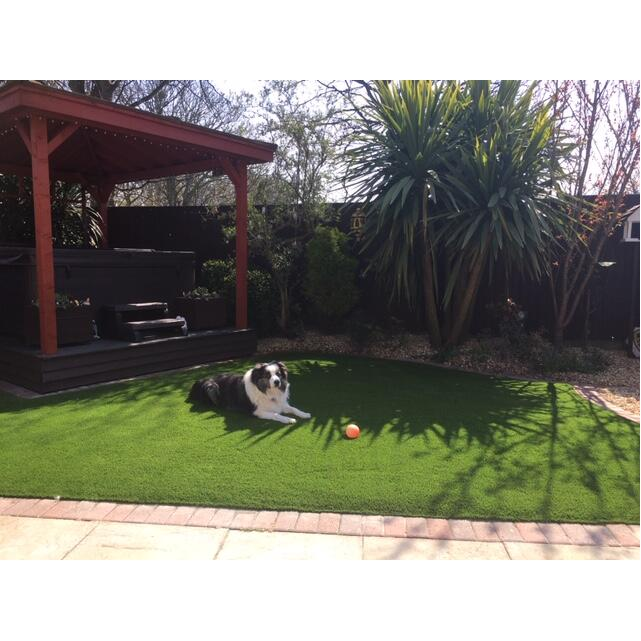 LazyLawn 5 star review on 4th May 2021