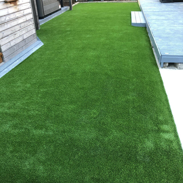 LazyLawn 5 star review on 19th May 2021