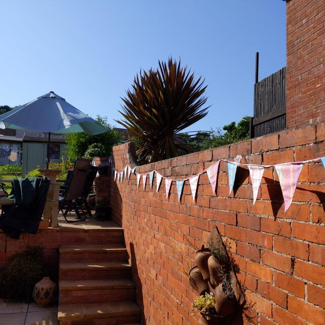 The Cotton Bunting 5 star review on 19th July 2021
