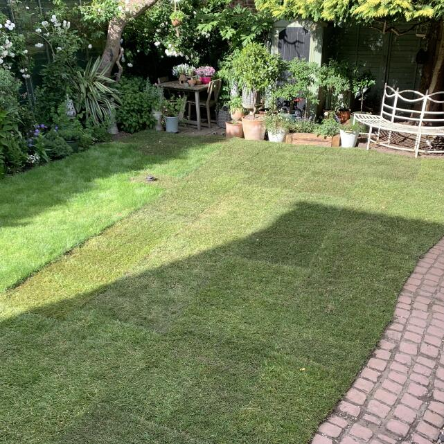 London Lawn Turf Company 5 star review on 10th June 2020