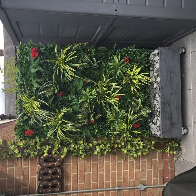 Evergreen Trees & Shrubs 5 star review on 7th August 2019