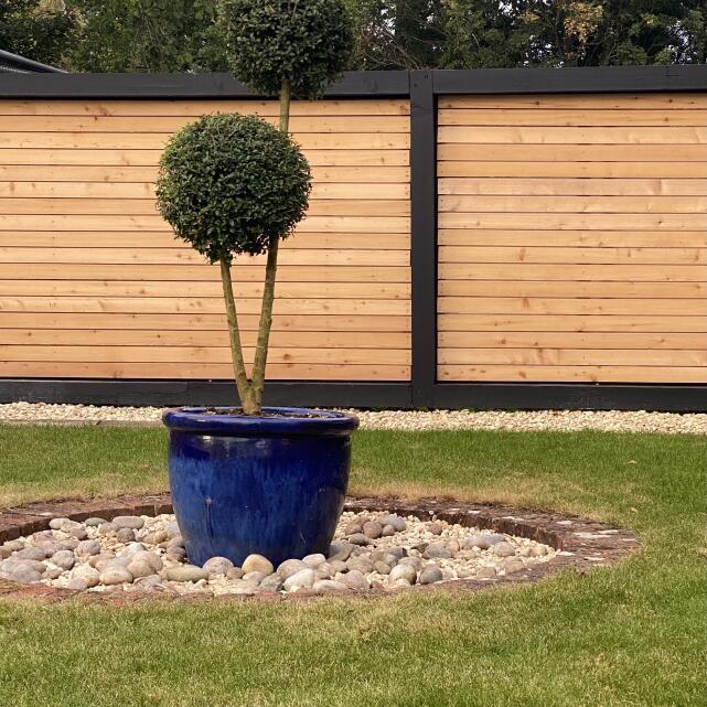 Grasslands Nursery 5 star review on 19th September 2021