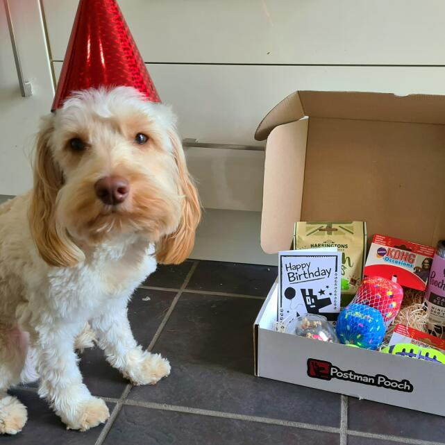 Postman Pooch 5 star review on 18th September 2020