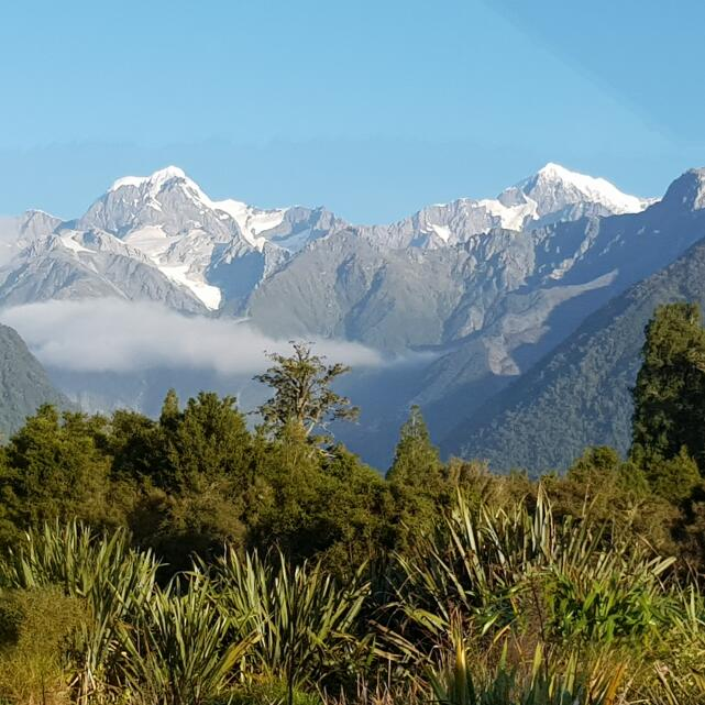 Silver Fern Holidays 5 star review on 8th June 2020