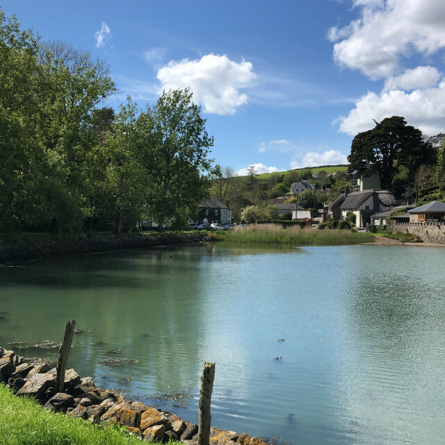 Salcombe Finest 5 star review on 7th June 2021